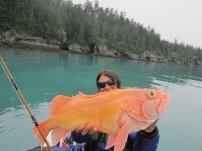 Yellow Eyed Rock Fish